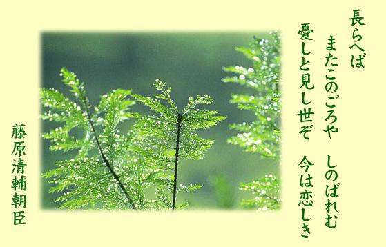 百人一首/藤原清輔朝臣(ふじわら...
